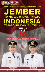 Peringatan Hari Kemerdekaan ke 76 Republik Indonesia, Pedoman Penggunaan Logo dan Desain Turunan